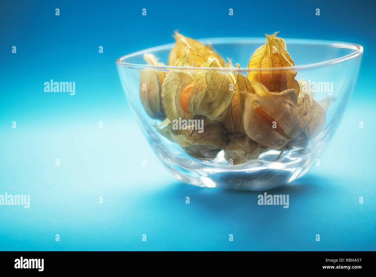 Physalis in a glass bowl with blue background - Stock Image