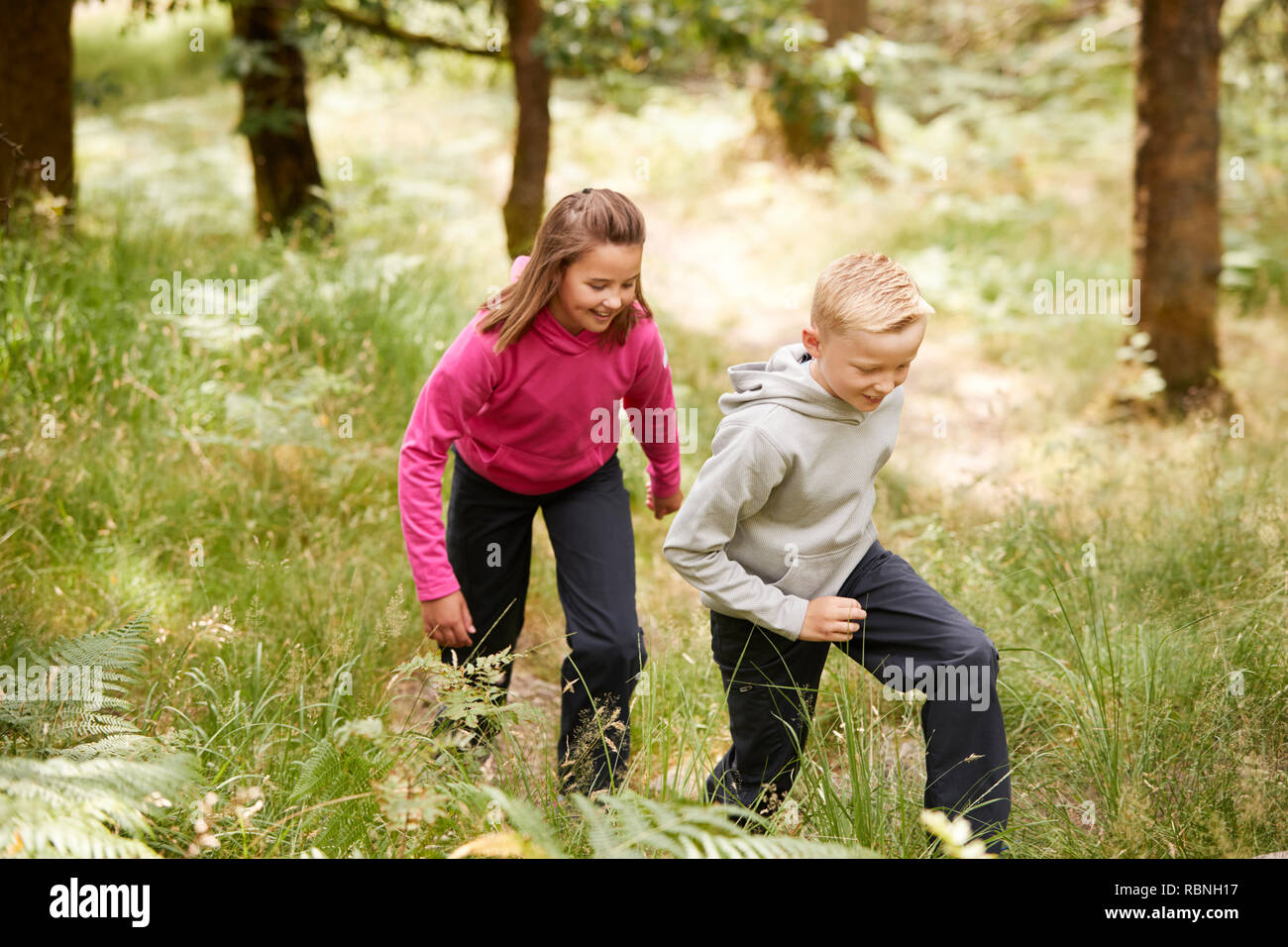 Two children walking together in a forest amongst greenery, three quarter length, side view - Stock Image