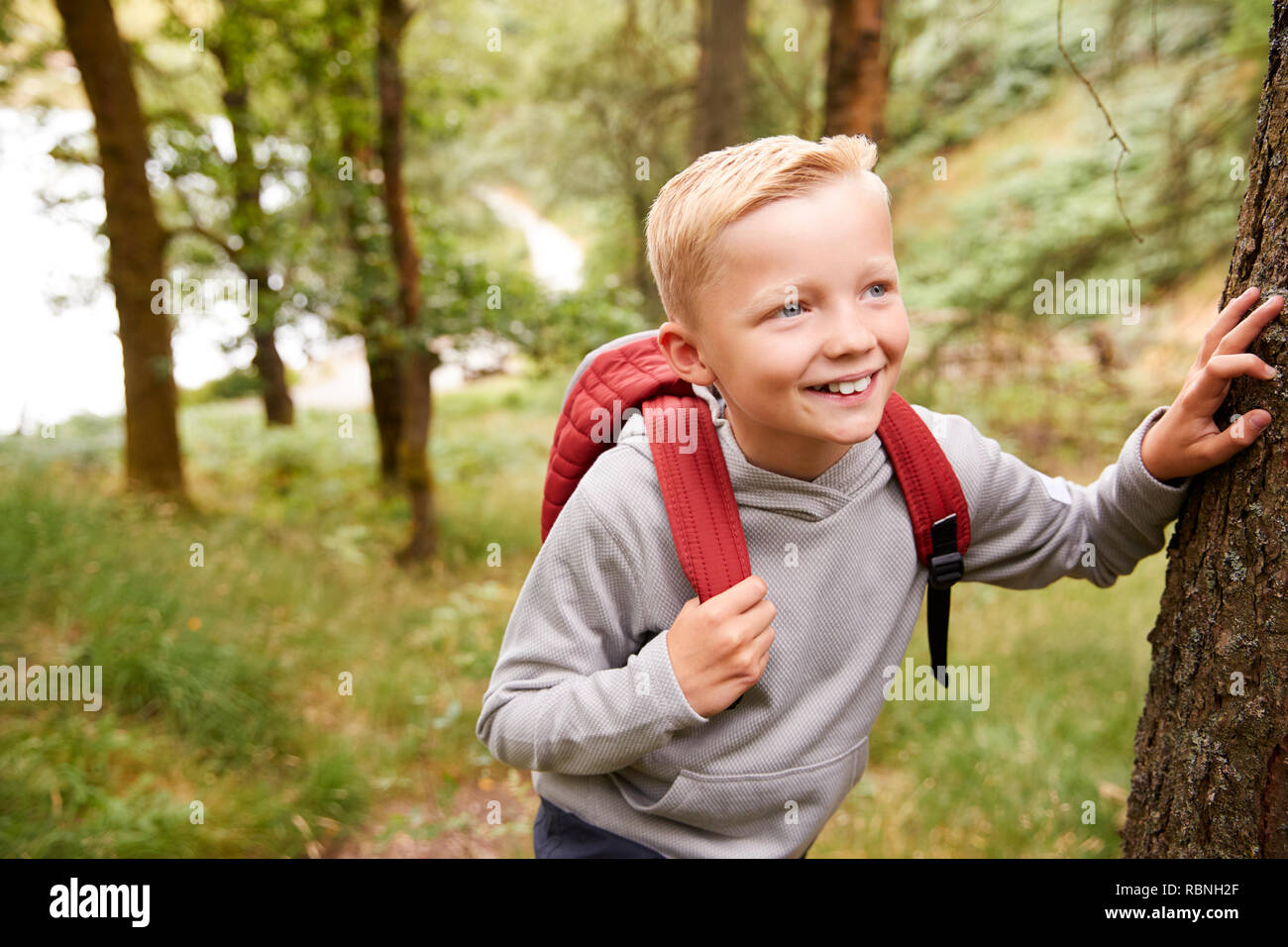 Pre-teen boy taking a break leaning on a tree during a hike in a forest, elevated view, close up - Stock Image