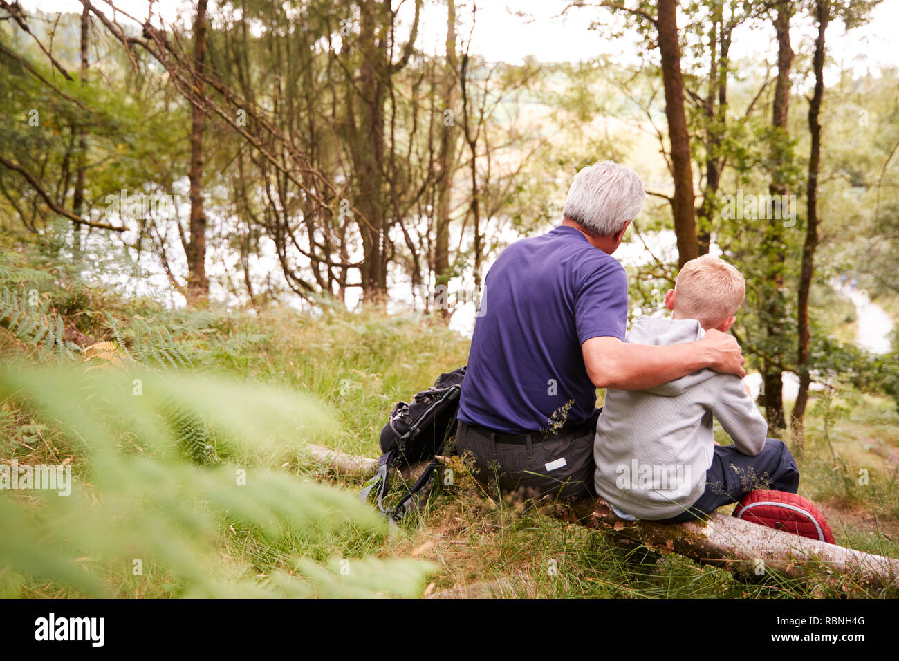 Grandfather and grandson on a hike sitting on a fallen tree in a forest, looking ahead, back view - Stock Image