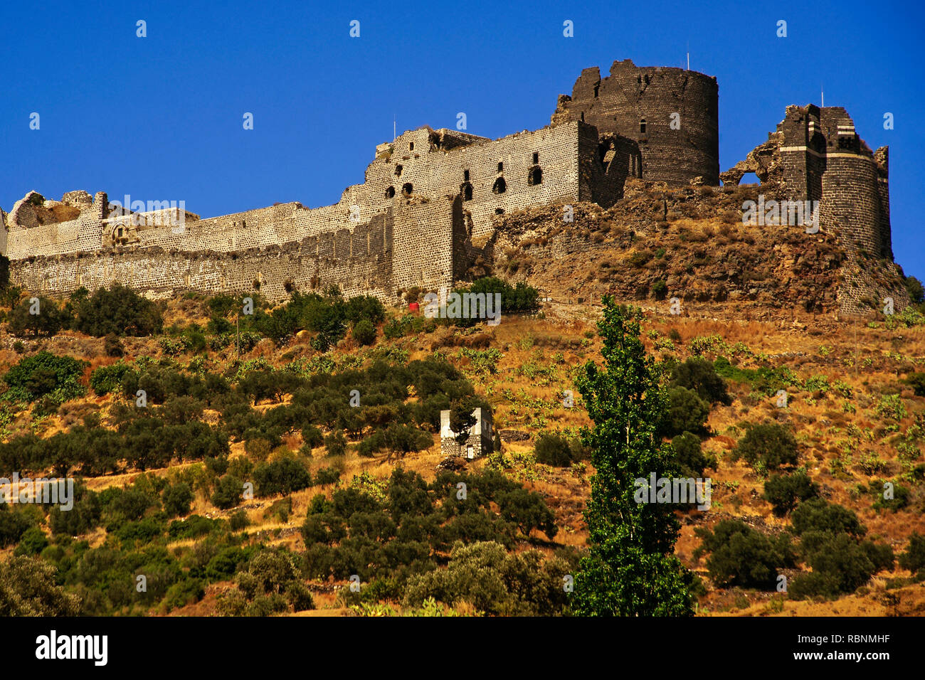 Chapel, The Margat castle of the crusaders, Marqab. Syria, Middle East - Stock Image