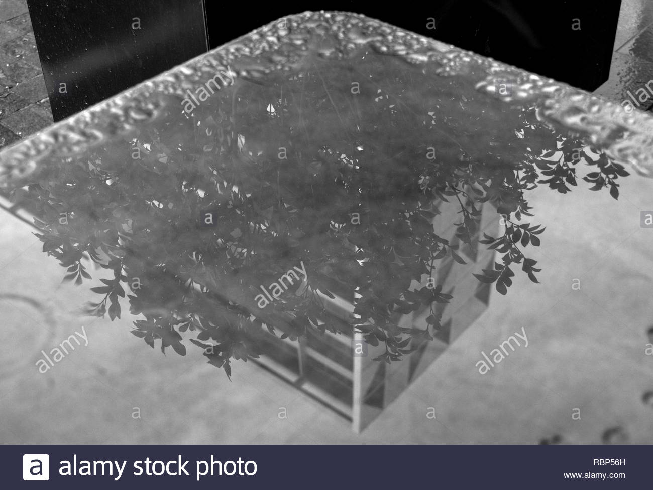 Reflection of building on wet table - Stock Image