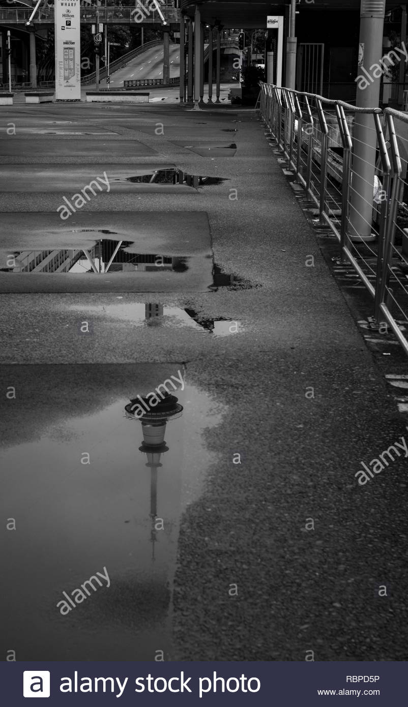 Reflection of Sky Tower in a puddle - Stock Image