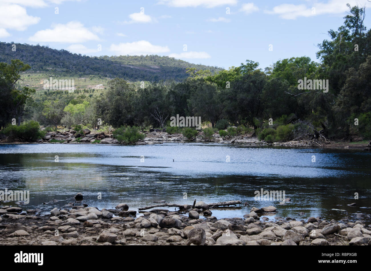 The Walyunga National Park, roughly translated as 'happy place', is a series of streams in the Darling range northeast of Perth in Western Australia - Stock Image