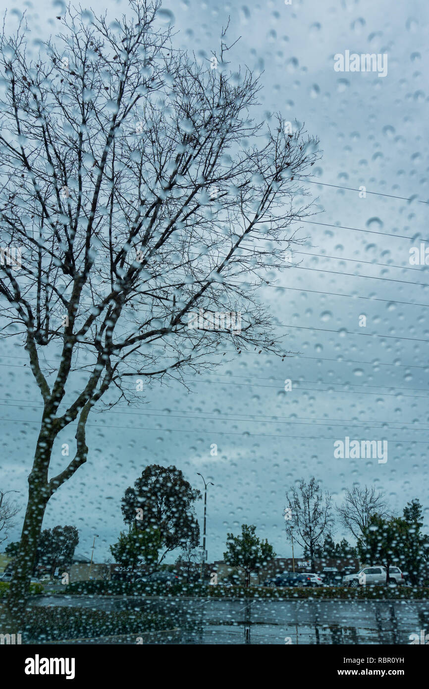 Blurred drops of rain on the window; focus on trees in the background - Stock Image