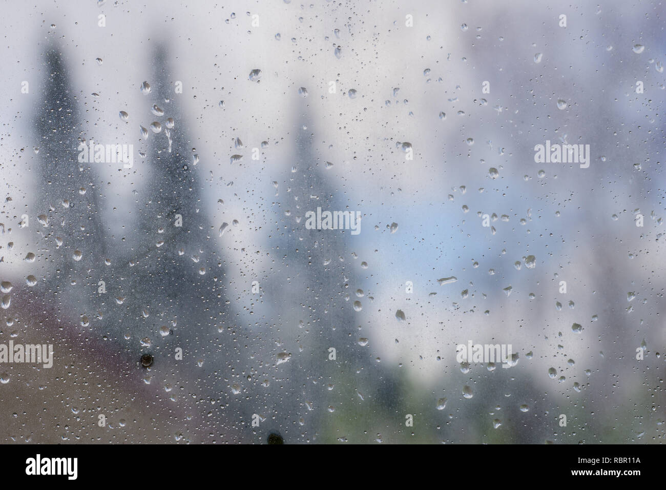 Drops of rain and condensation on the window, blurred trees in the background - Stock Image