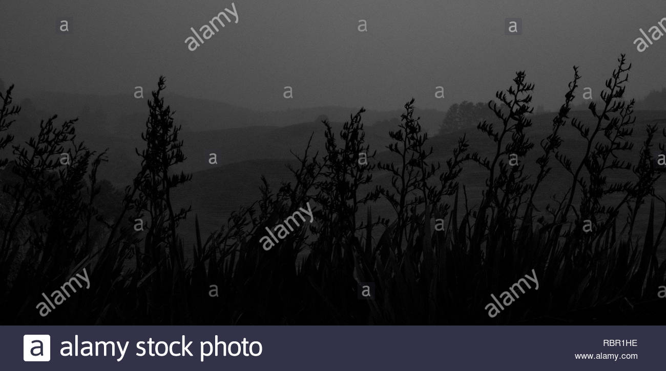 Stormy day by a river - Stock Image