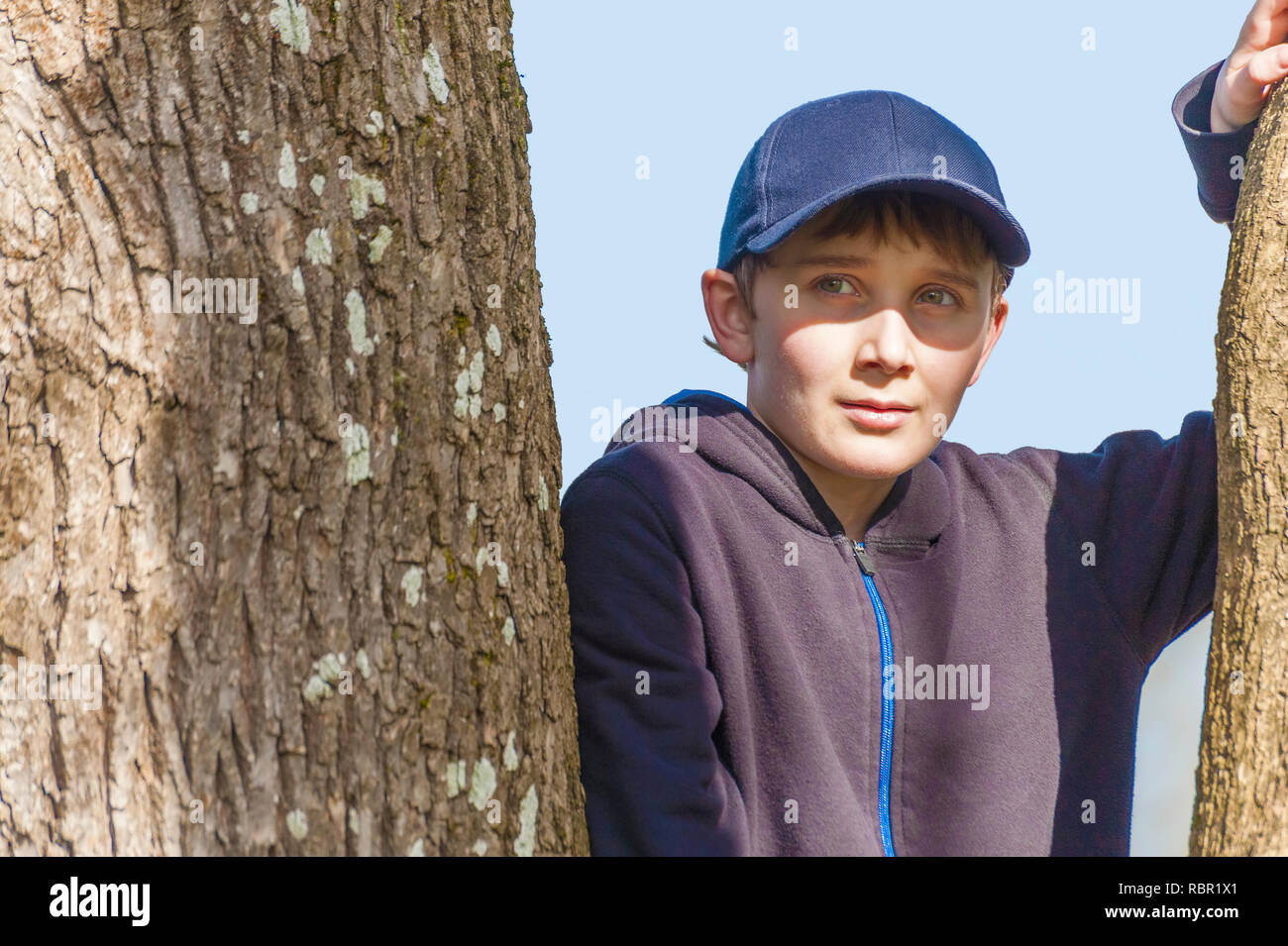 Close up of a young boy in a tree wearing a blue sweatshirt and ball cap. - Stock Image
