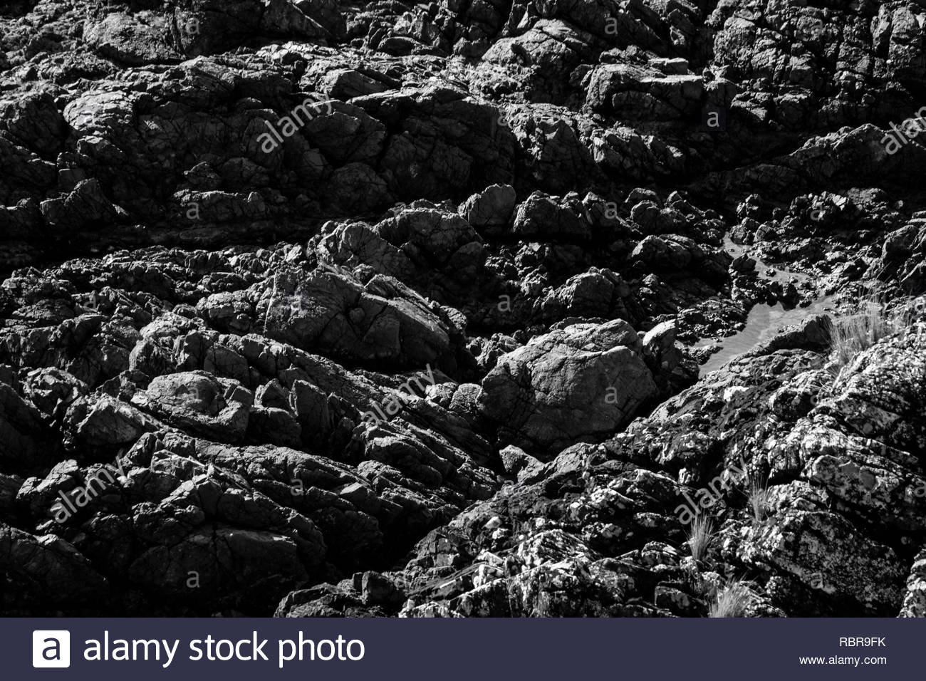 Rocks at Coopers Beach - Stock Image