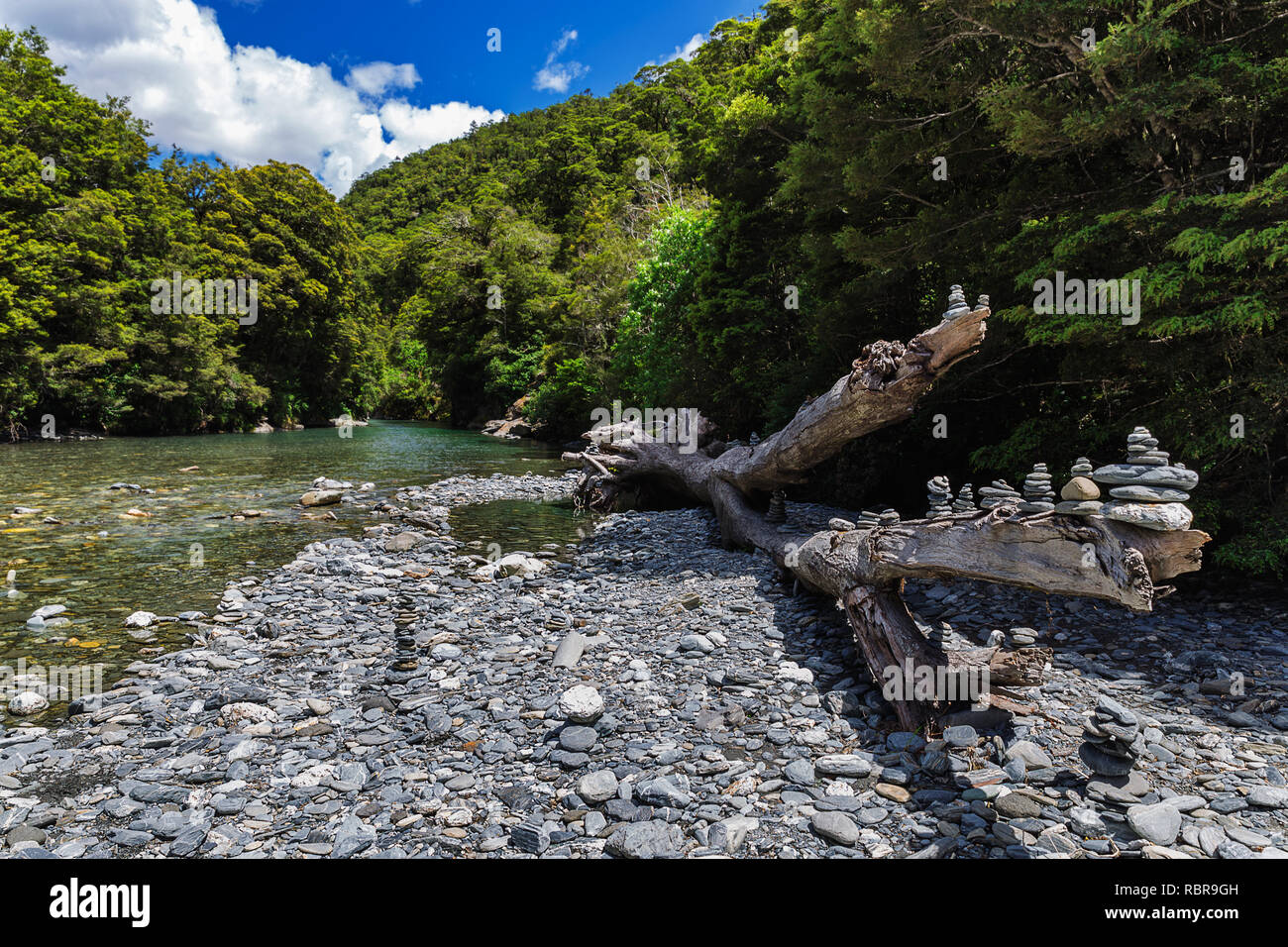 Old tree and stone pyramids near Fantail Falls on South Island, New Zealand - Stock Image