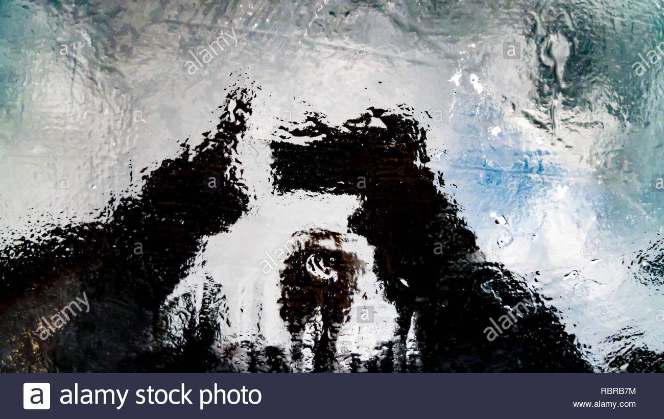 Distortion of figure against cloudy sky reflecting from from thin layer of water over hot tarred surface - Stock Image