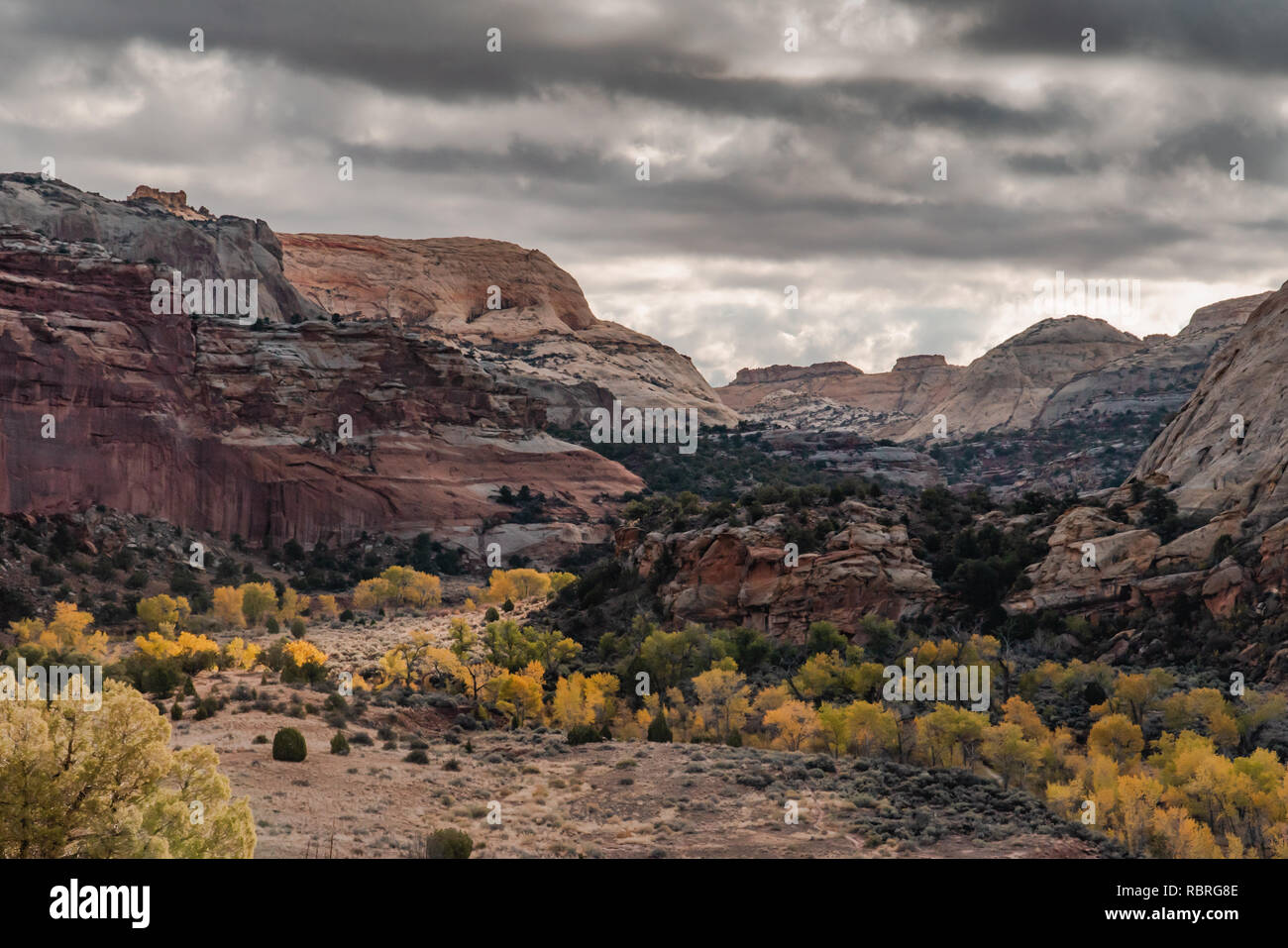 Capitol Reef National Park right after sunrise - Stock Image
