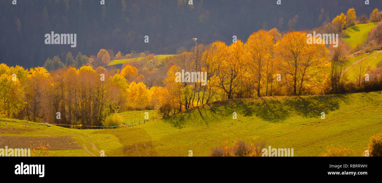 Dolomites Mountains, autumn landscape in the Isarco valley in South Tyrol, Alps, northern Italy, Europe - Stock Image