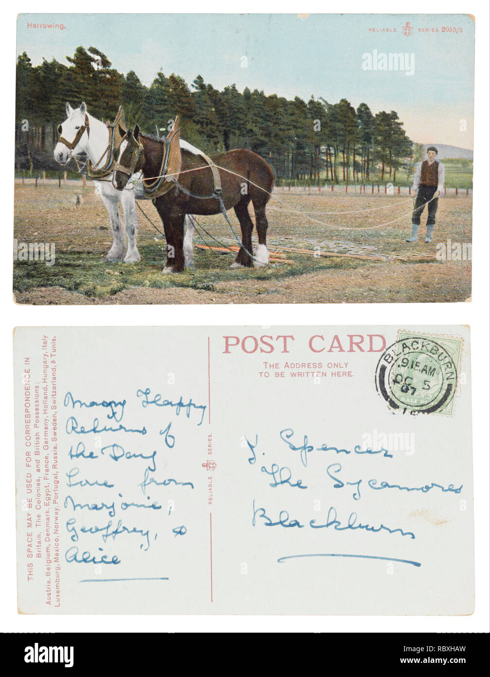Postcard of farm boy harrowing sent from Blackburn to J Spencer, The Sycamores wishing many happy returns of the day - Stock Image
