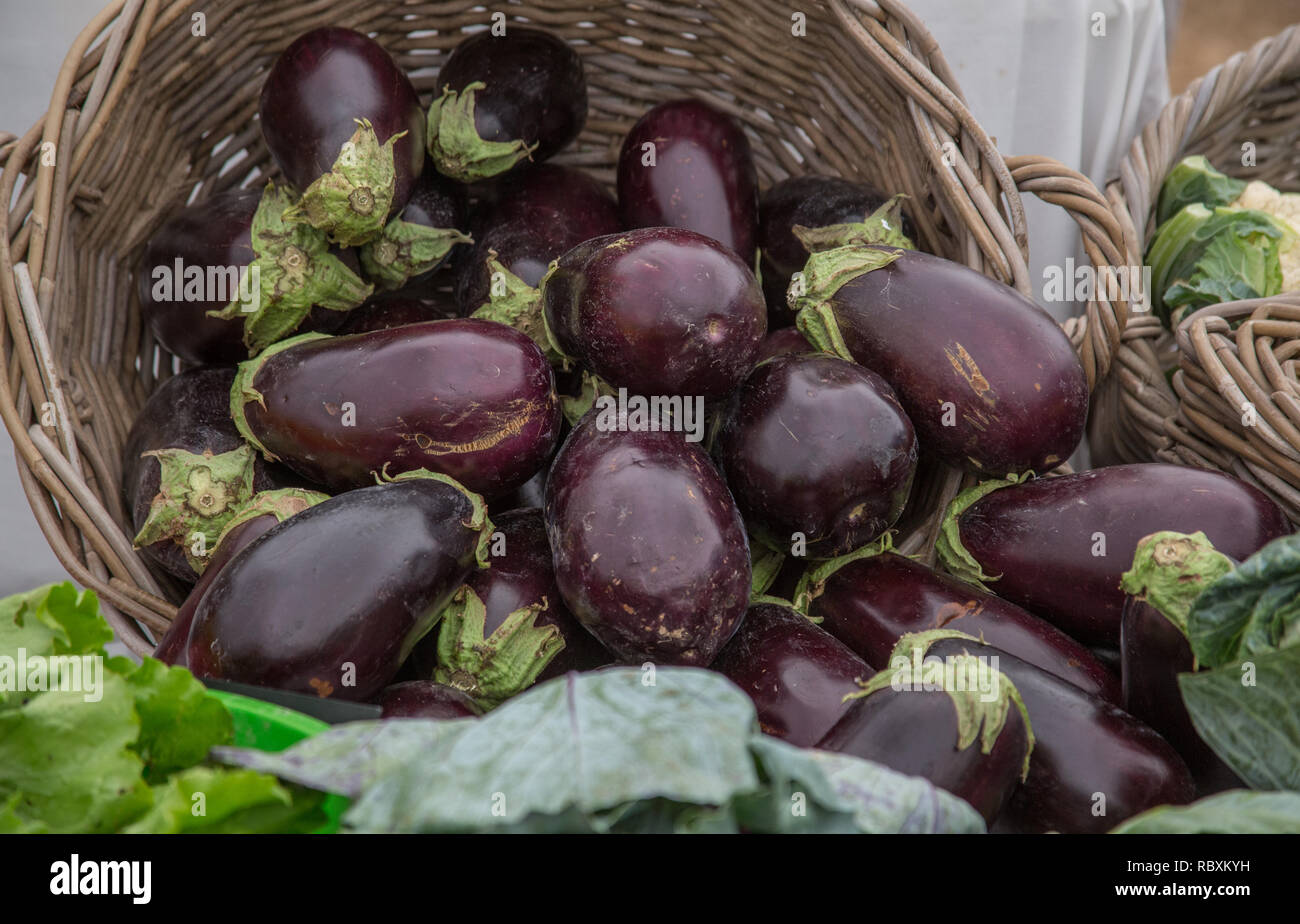 Eggplants In A Basket At Organic Farmers Market Stock Photo