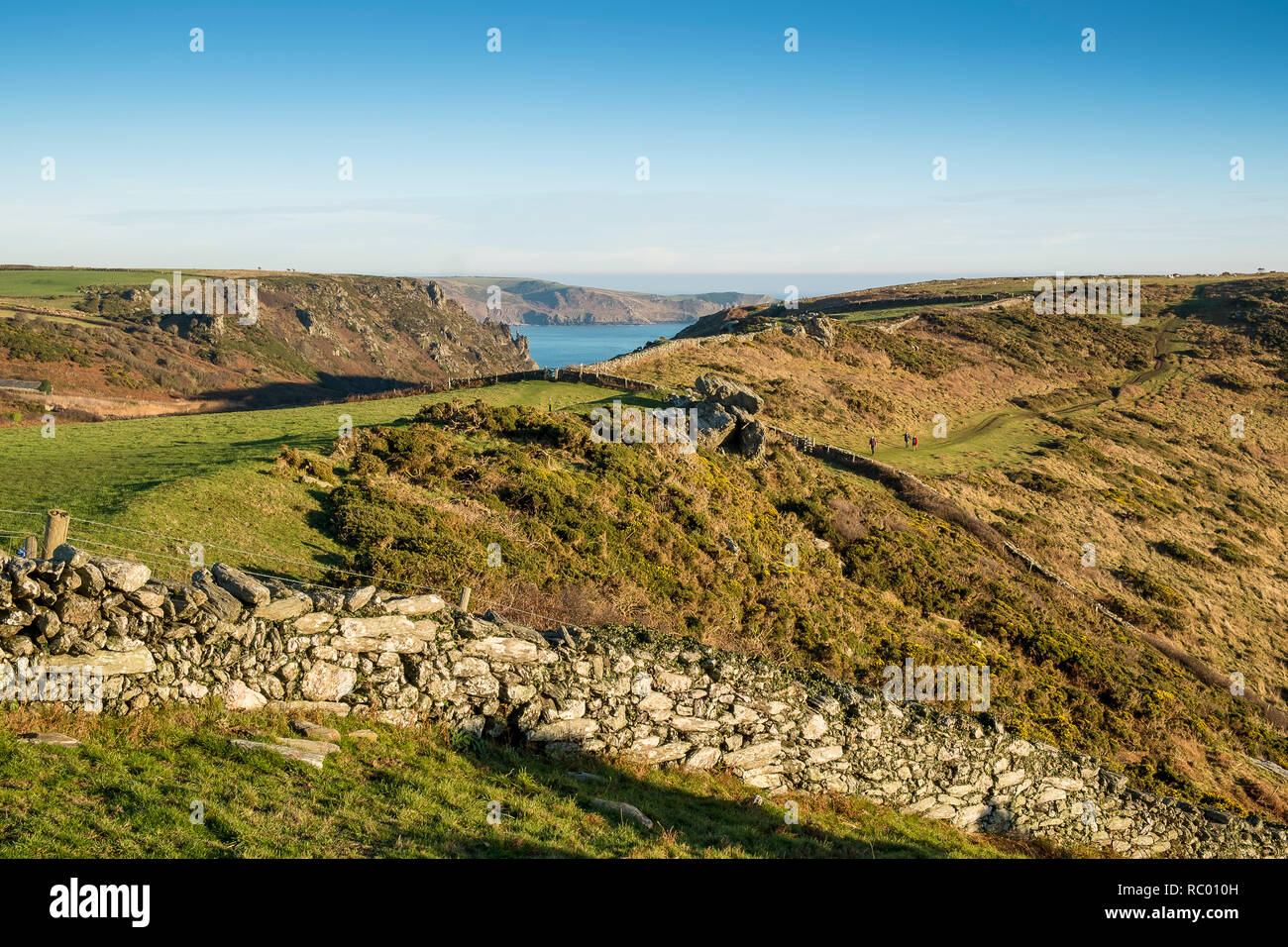 Rocky pasture divided with dry stone walls. Bolt Head, Salcombe, South Hams. Devon. UK - Stock Image