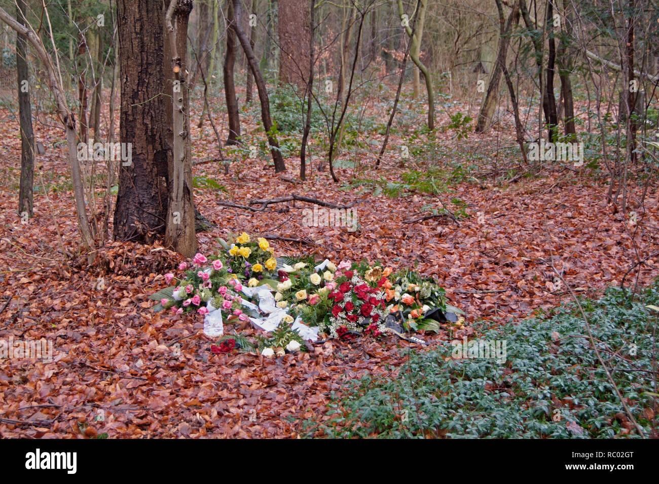 Südwest Kirchhof Stahnsdorf, Urnenhain, Berlin, Deutschland, Europa | Southwest Churchyard Stahnsdorf, Südwest Kirchhof, Berlin, Germany, Europe Stock Photo