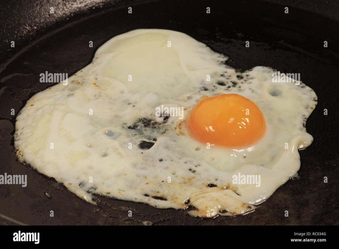 Ei, Pfanne, braten | Egg, pan, roast - Stock Image