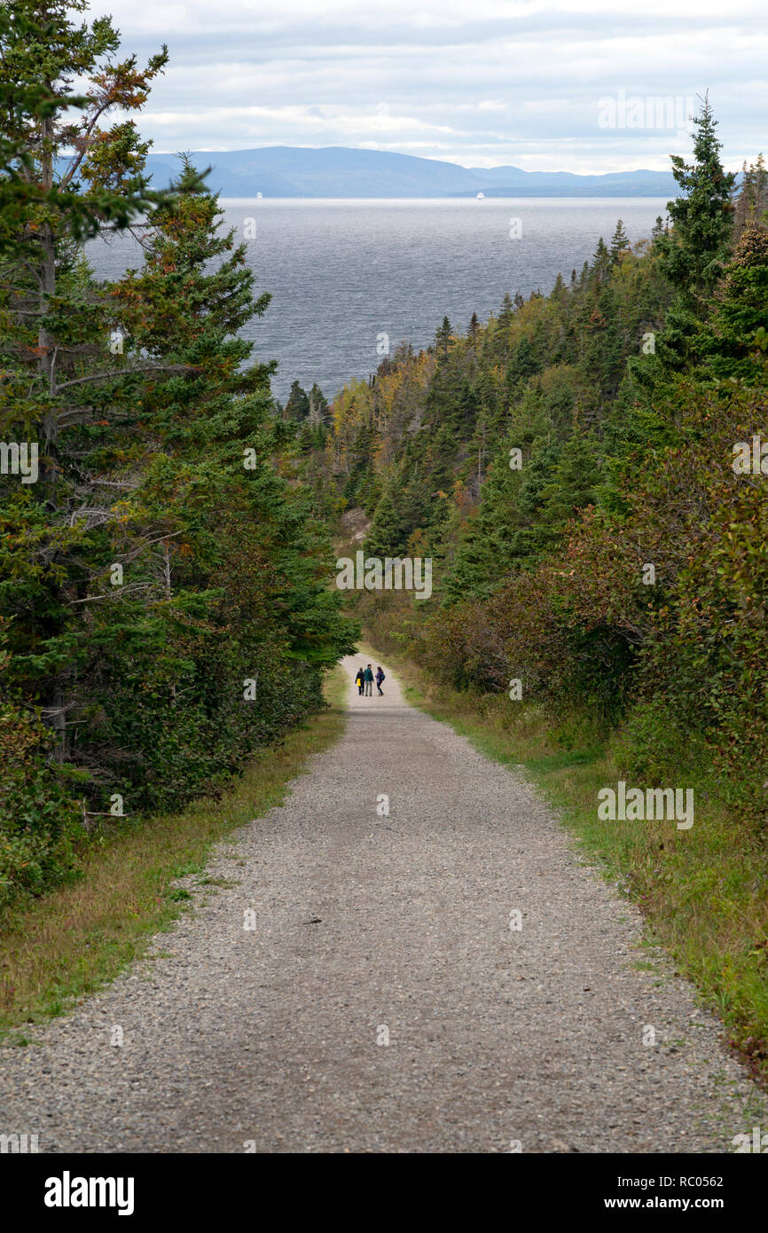 A trail in Forillon National Park on the Gaspé Peninsula of Quebec, Canada. The park is on the International Appalachian Trail. - Stock Image