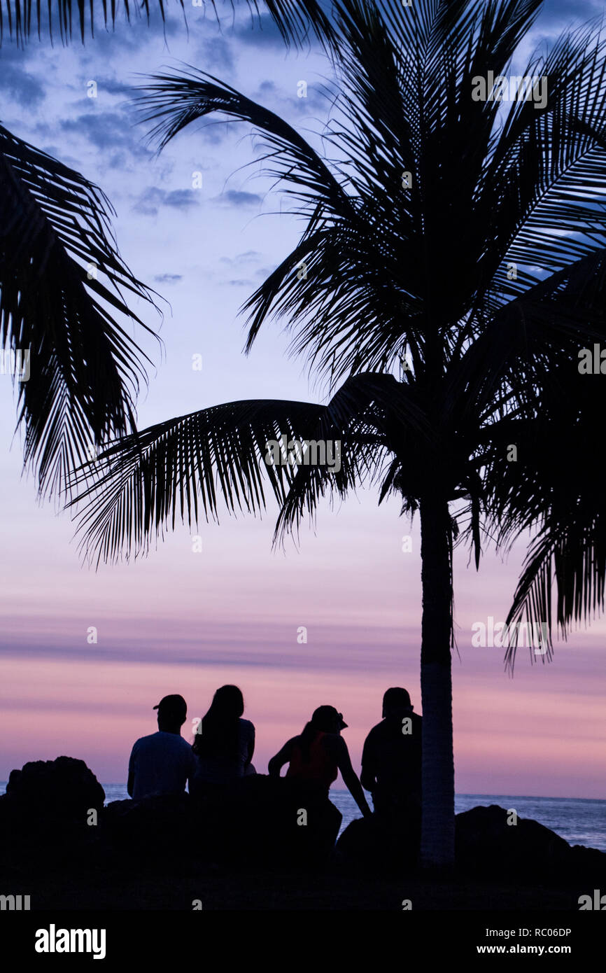 A photograph of four friends enjoying an amazing sunset under a tall palm tree at Jaco Beach, Costa Rica. People are not recognizable. - Stock Image