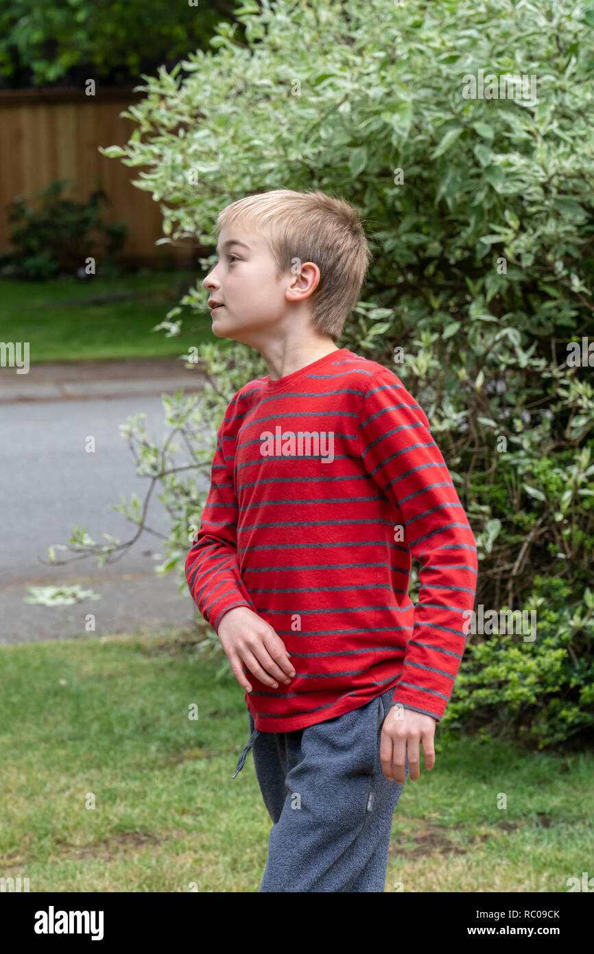 Issaquah, Washington, USA.  10 year old boy staring intently and with curiosity. (MR) - Stock Image