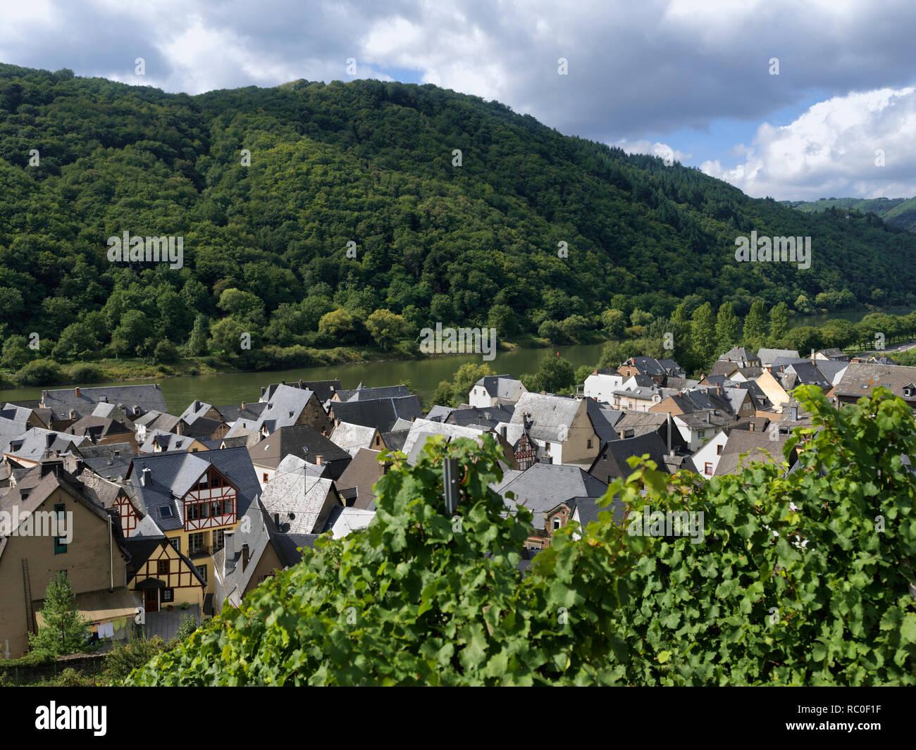 Ediger-Eller, Mittelmosel, Landkreis Cochem-Zell, Rheinland-Pfalz, Deutschland, Europa |  Ediger-Eller, district Cochem-Zell, Middle Moselle, Rhinelan - Stock Image