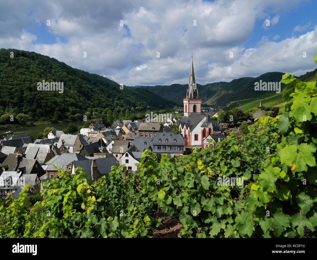 Pfarrkirche St. Martin, Ediger-Eller, Mittelmosel, Landkreis Cochem-Zell, Rheinland-Pfalz, Deutschland, Europa | church St. Martin, Ediger-Eller, dist - Stock Image