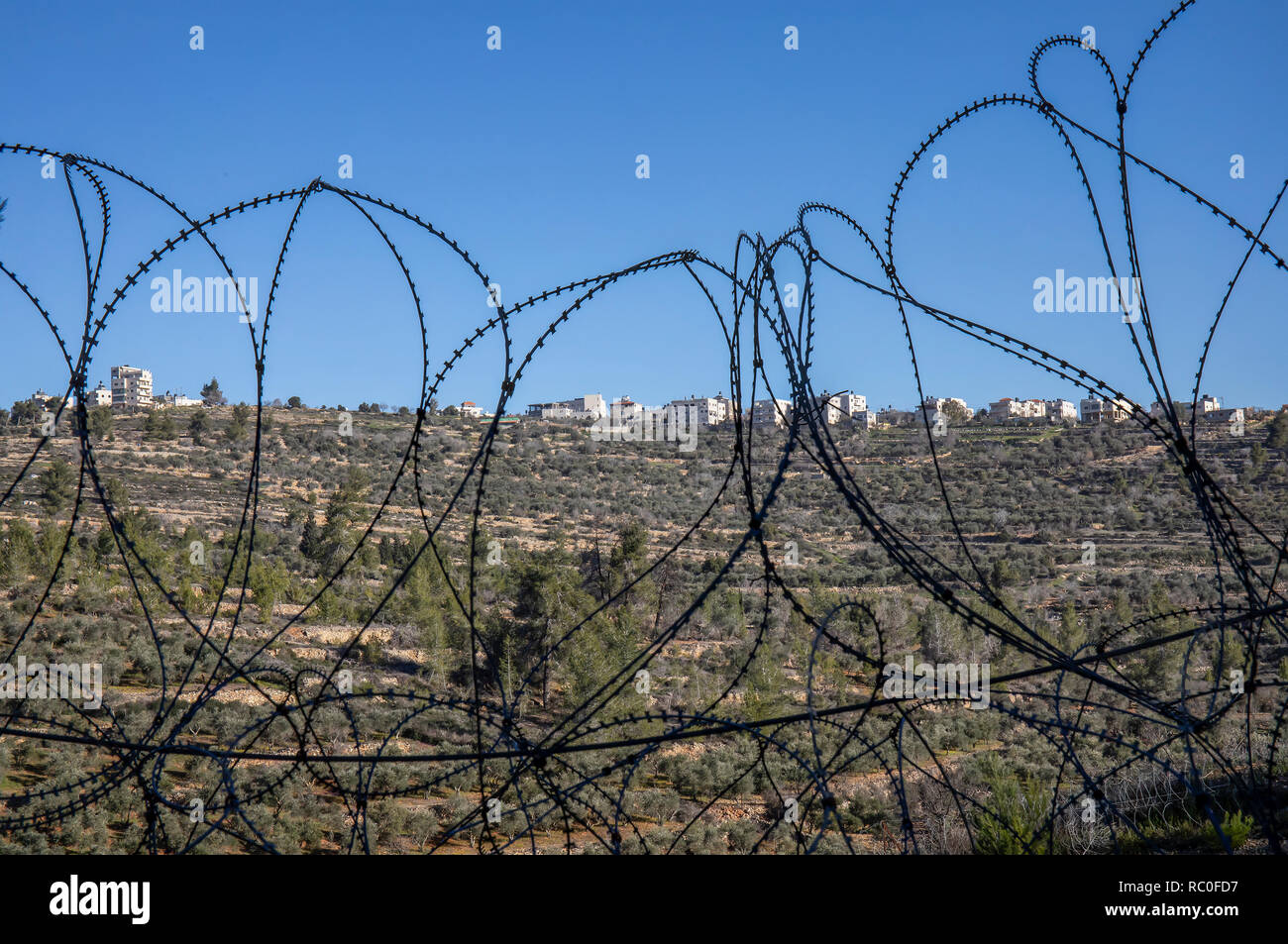 The palestinian village Beit Surik photographed through a barbed wire fences, separating it from israeli territories - Stock Image