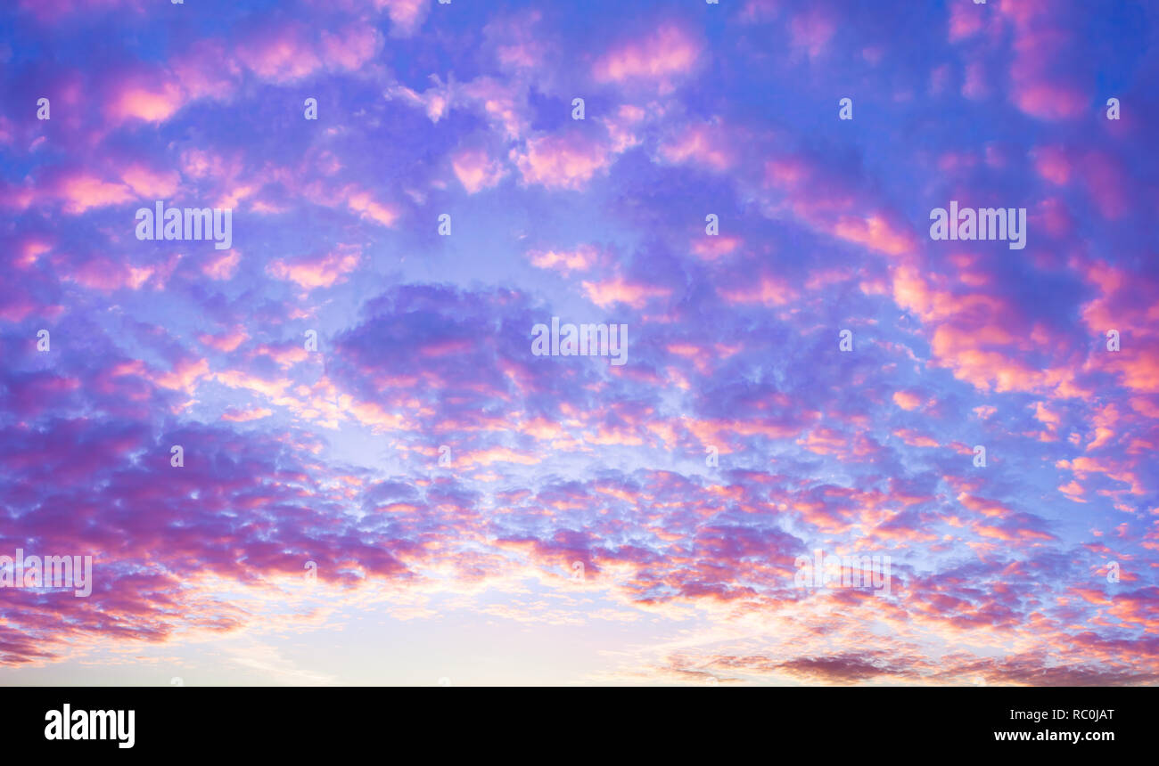 Beautiful Summer Landscape With Sunset Purple Scenery With Clouds In Sky Panoramic View Stock Photo Alamy