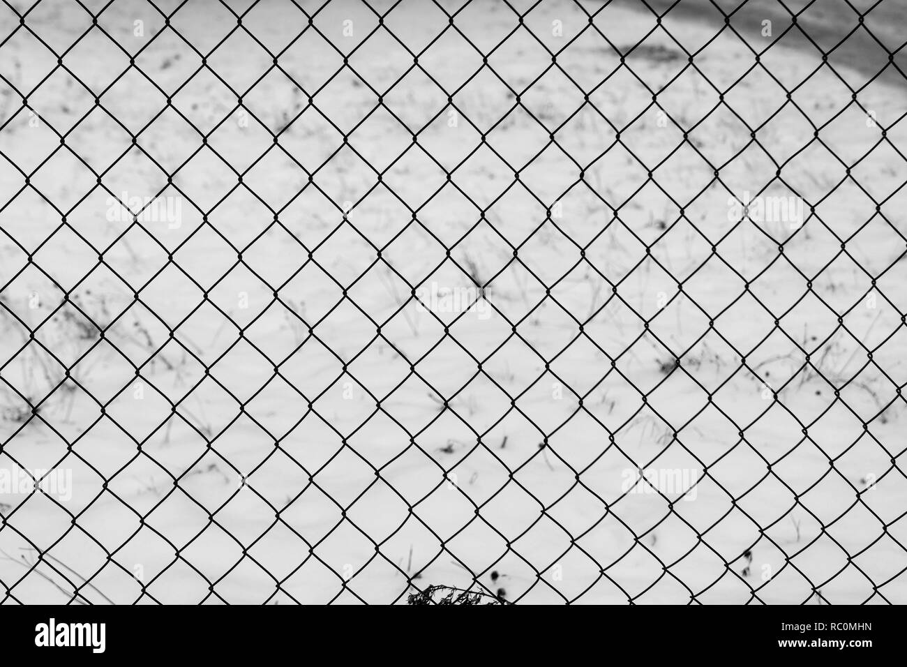 Wire fence in the snow. Fence background. Metallic net with snow. Metal net in winter covered with snow. Wire fence closeup. Steel wire mesh fence vin - Stock Image
