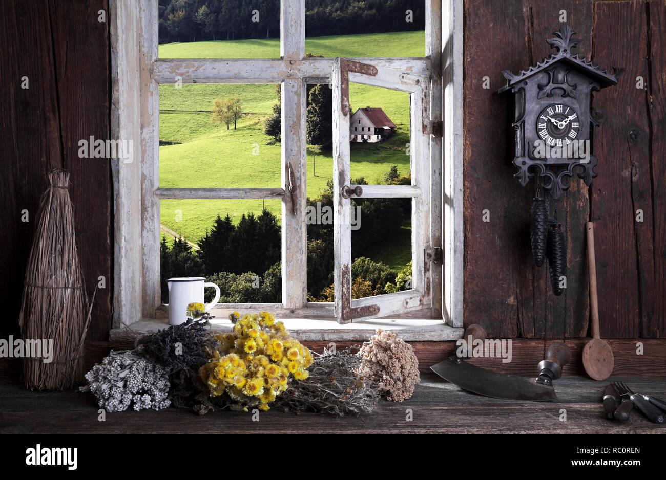 Bauernstube, Blick durch das Fenster - Stock Image