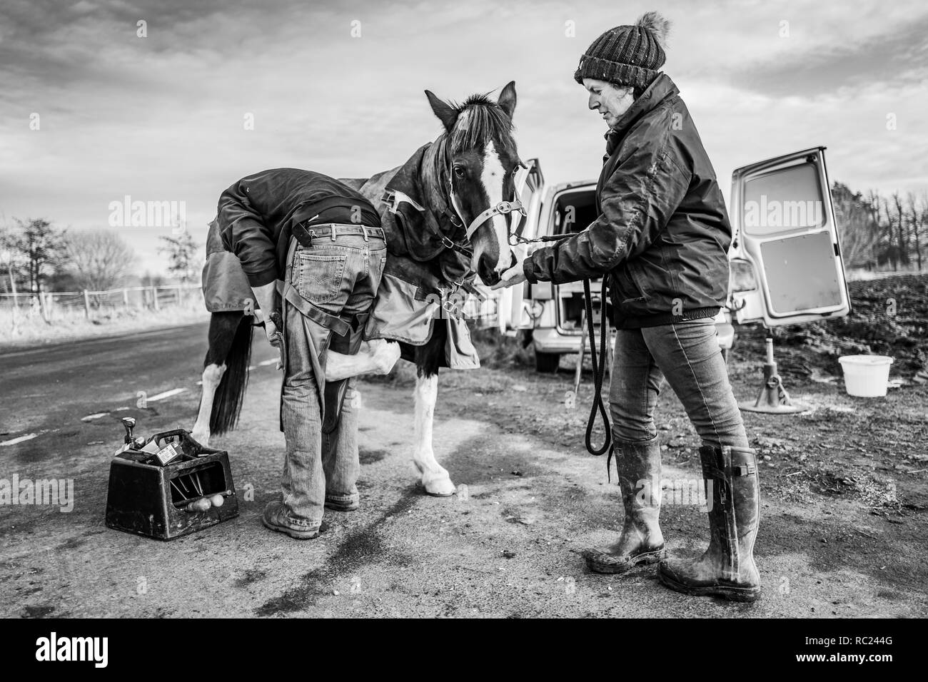 Morebattle, Kelso, Scottish Borders, UK. 9th January 2019. Gillian McFadyen has her horses shoed by a farrier at the end of a quiet T-junction near Mo - Stock Image
