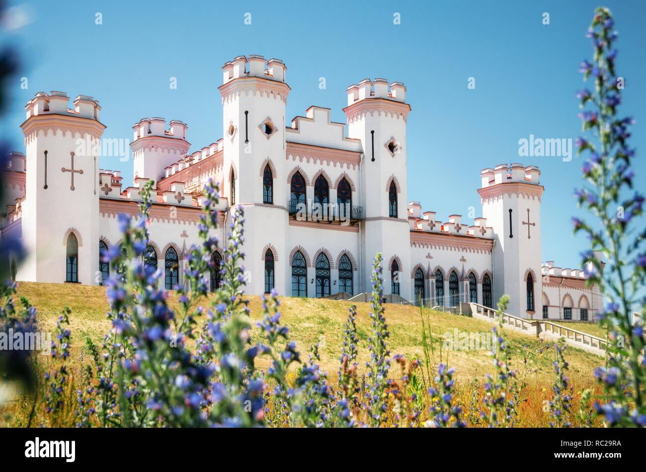 View Puslowski palace through lavandula flowers in Kosava in summertime, Belarus - Stock Image