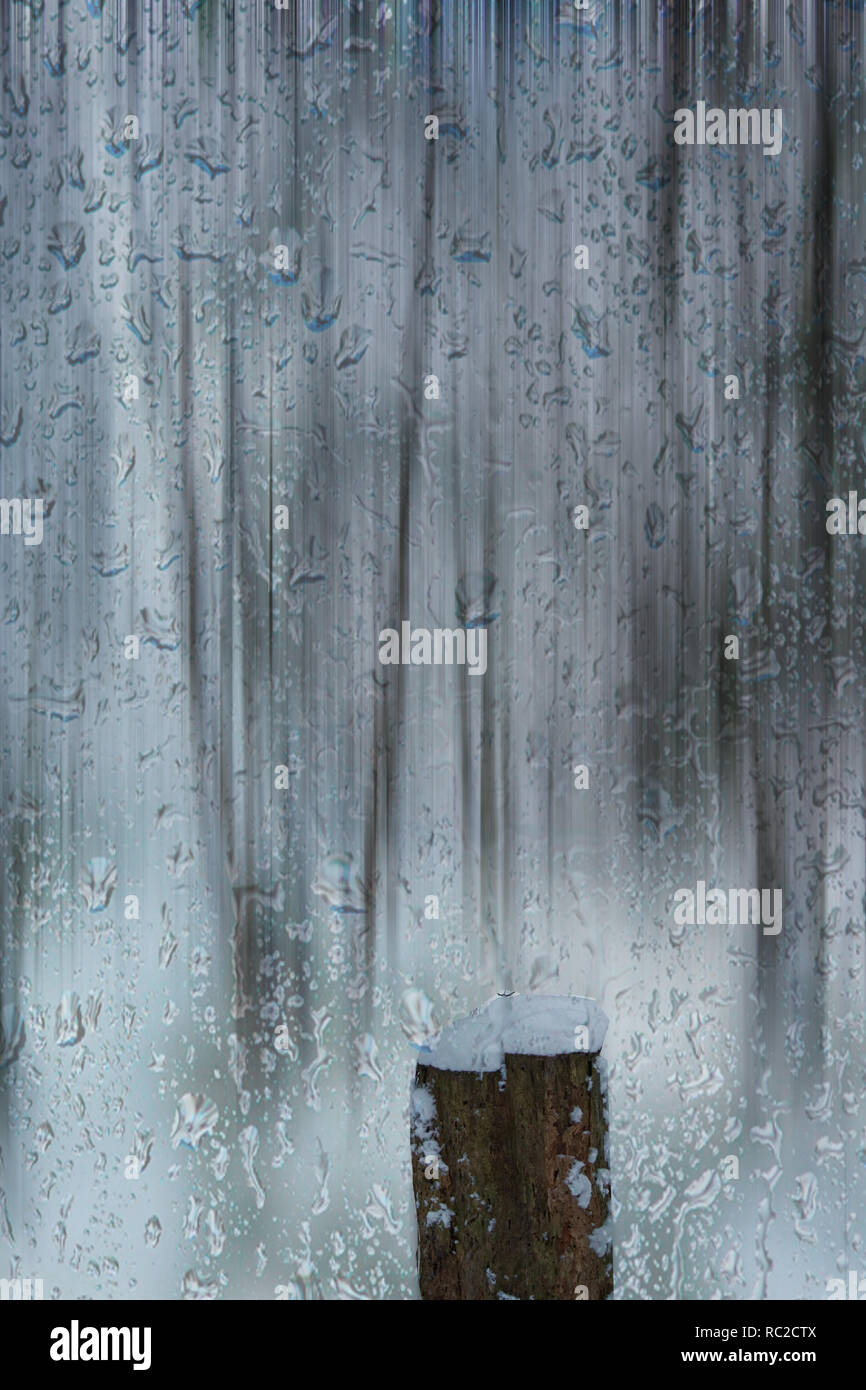 Concept nature : Snow and rain - Stock Image