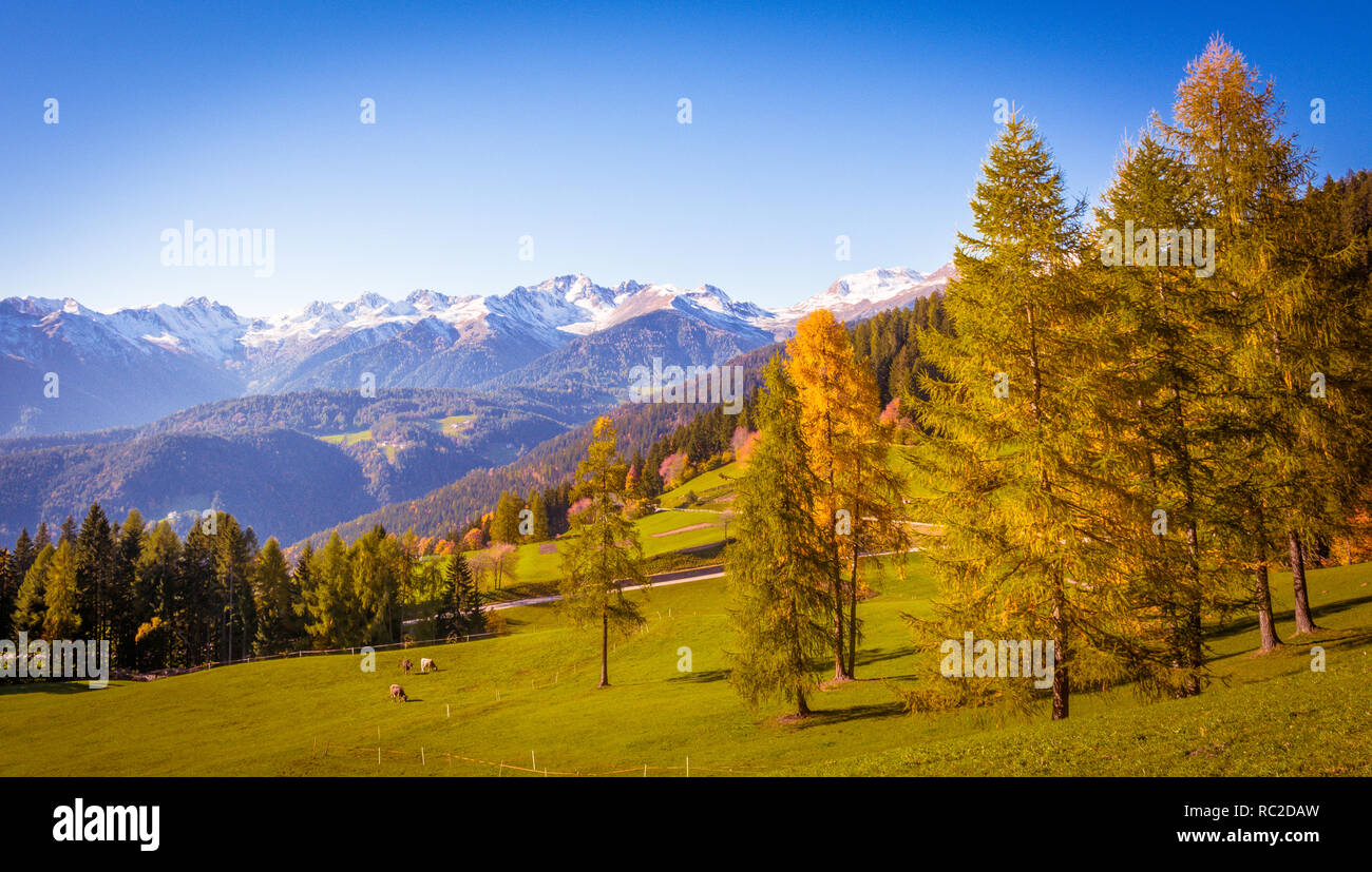 Dolomites Mountains, autumn landscape in the The Ultental ( Val d'Ultimo ) in South Tyrol, Alps, northern Italy, Europe. Beauty of nature concept . Stock Photo