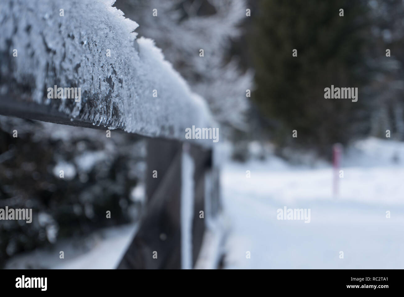 Frozen fence - Stock Image