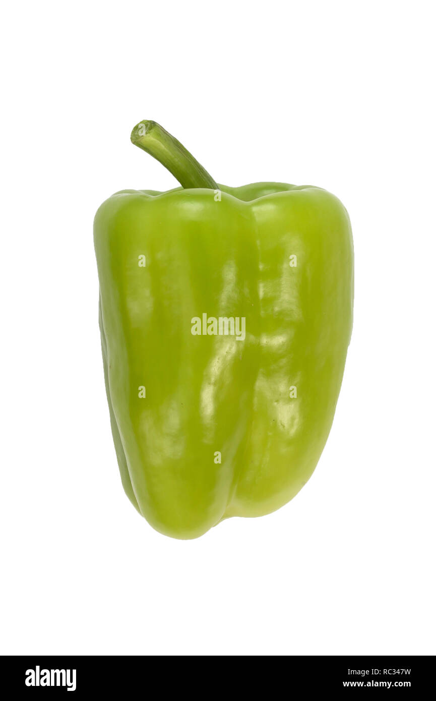 Green sweet pepper isolated on white background. View from side. Fresh vegetable - Stock Image