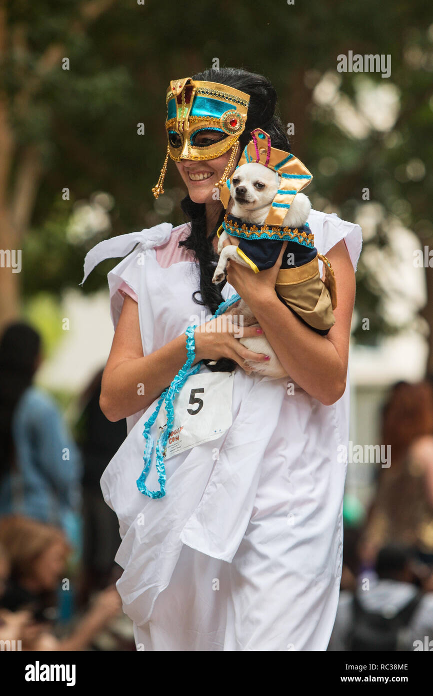 Atlanta, GA, USA - August 18, 2018:  A young woman dressed as an ancient Egyptian carries her small dog dressed as a pharoah at Doggy Con, an event wh - Stock Image