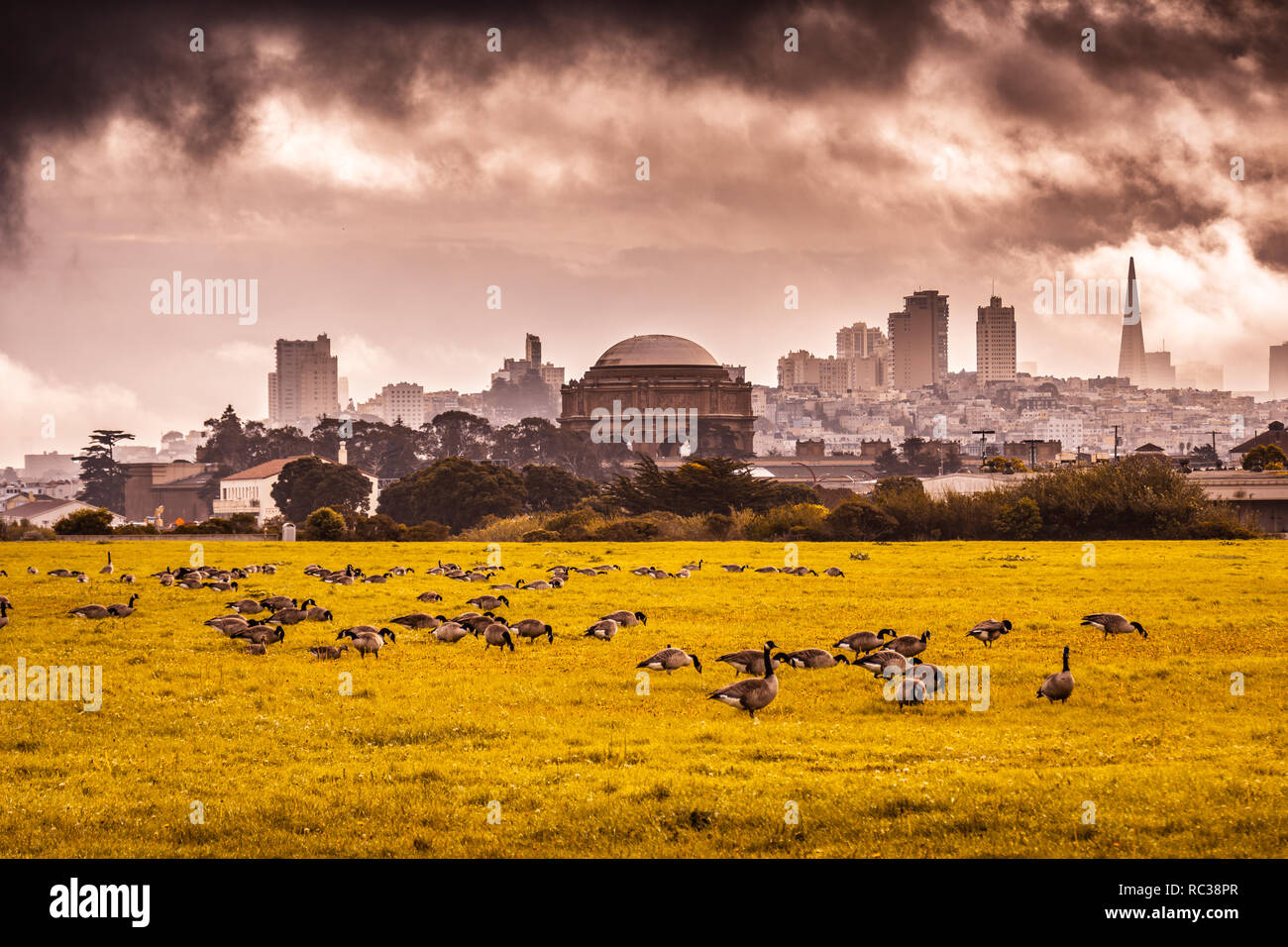 Heavy skies about San Francisco - Stock Image