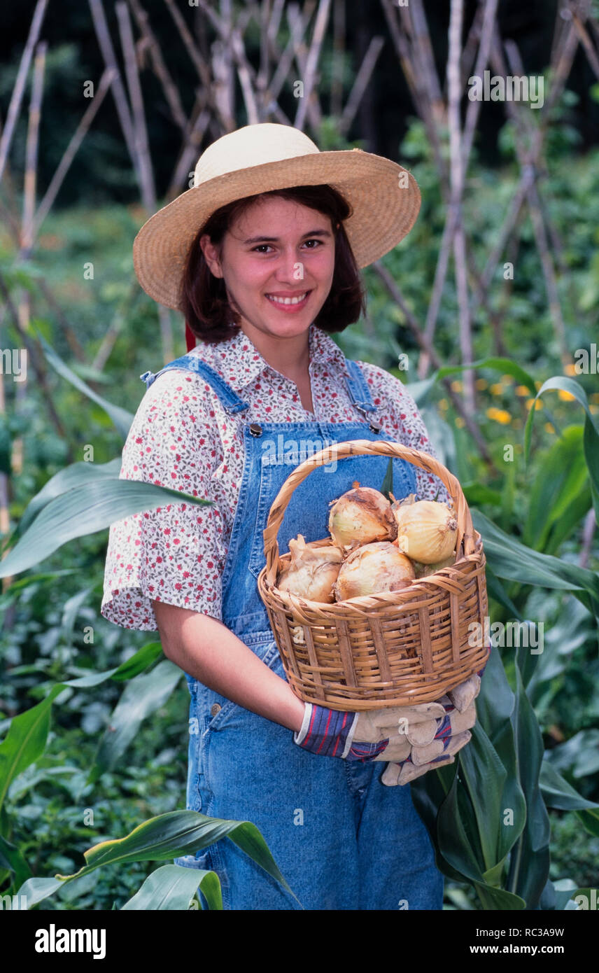 Young woman showing a basket with freshly picked onions in an organic garden. Today more than ever, backyard gardens are going organic. Stock Photo