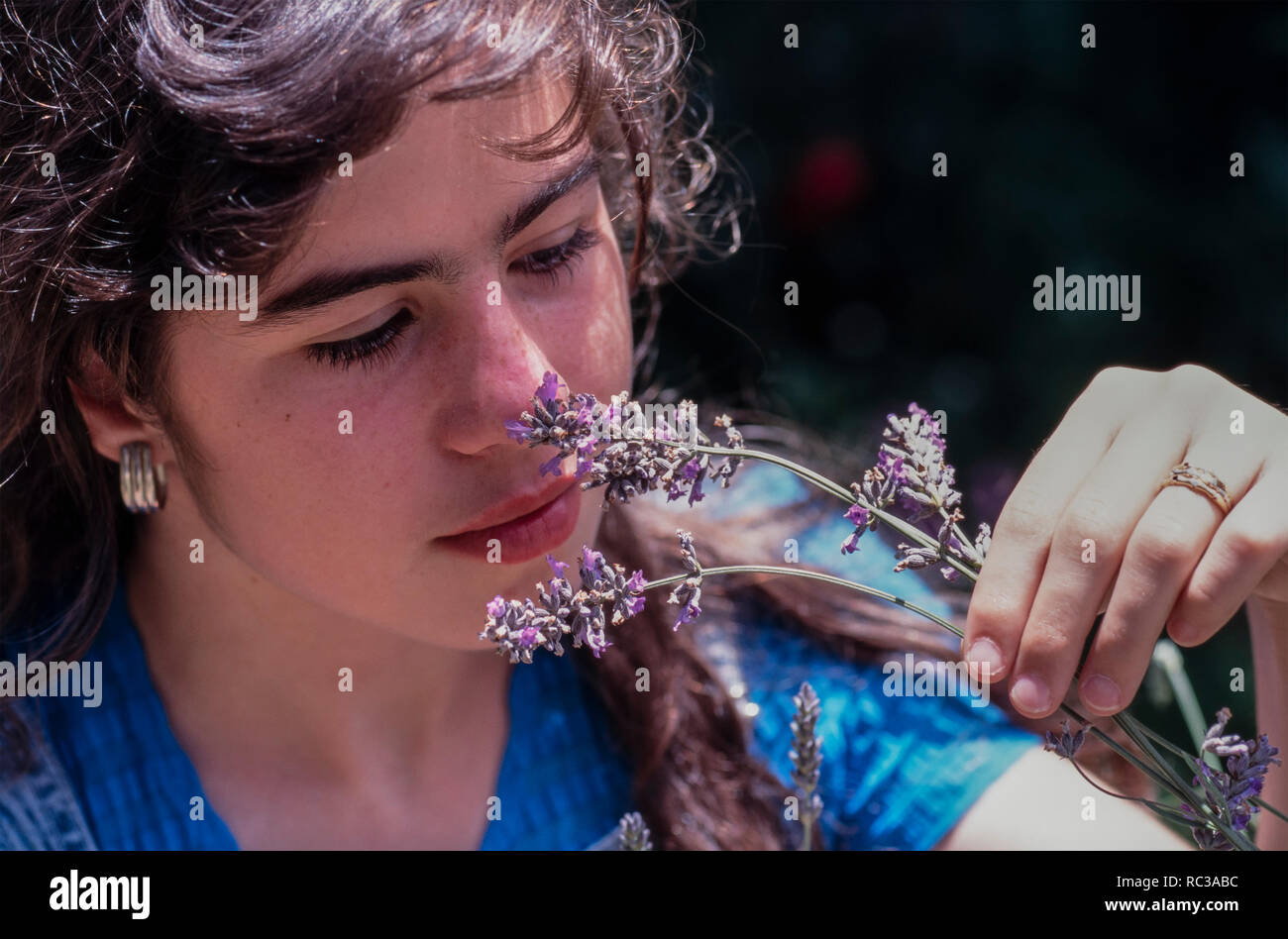 Young woman smelling lavender flowers. Portugal - Stock Image