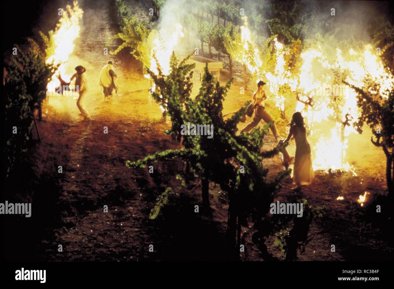 Original film title: A WALK IN THE CLOUDS. English title: A WALK IN THE CLOUDS. Year: 1995. Director: ALFONSO ARAU. Credit: 20TH CENTURY FOX / Album - Stock Image