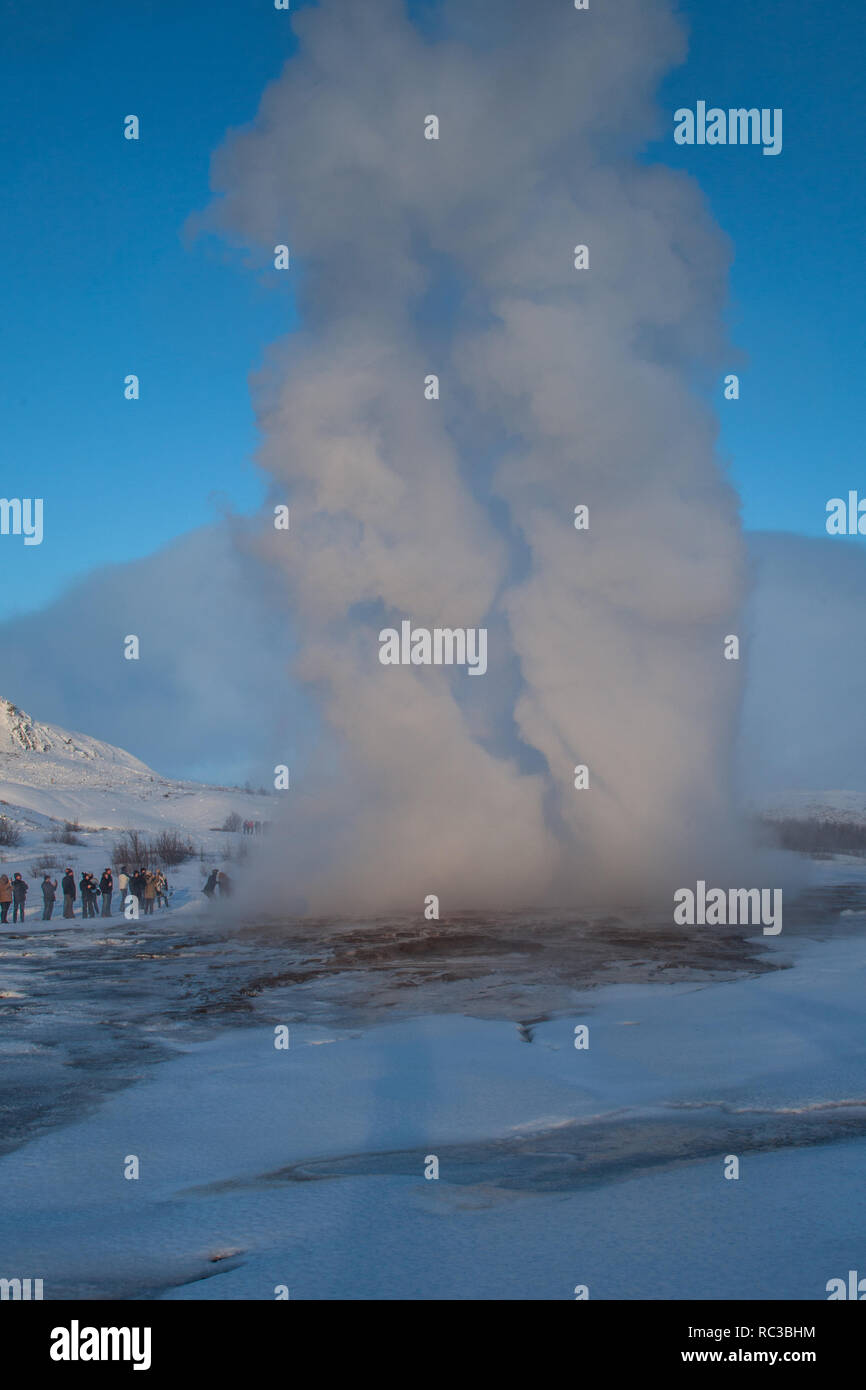 Strokkur Geyser erupts in Thingvellir National Park, - Stock Image