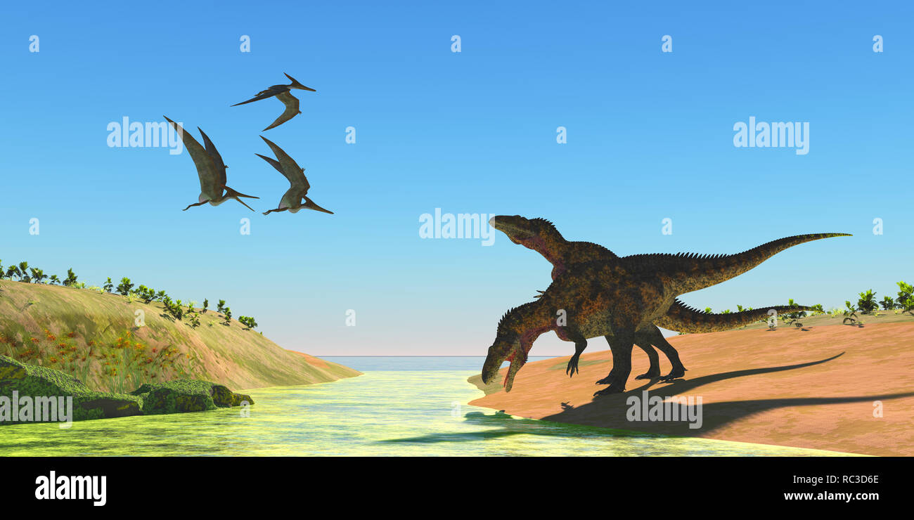 Acrocanthosaurus Dinosaurs - Pteranodon reptiles fly over two Acrocanthosaurus dinosaurs as they drink from a stream in the Cretaceous Period. - Stock Image