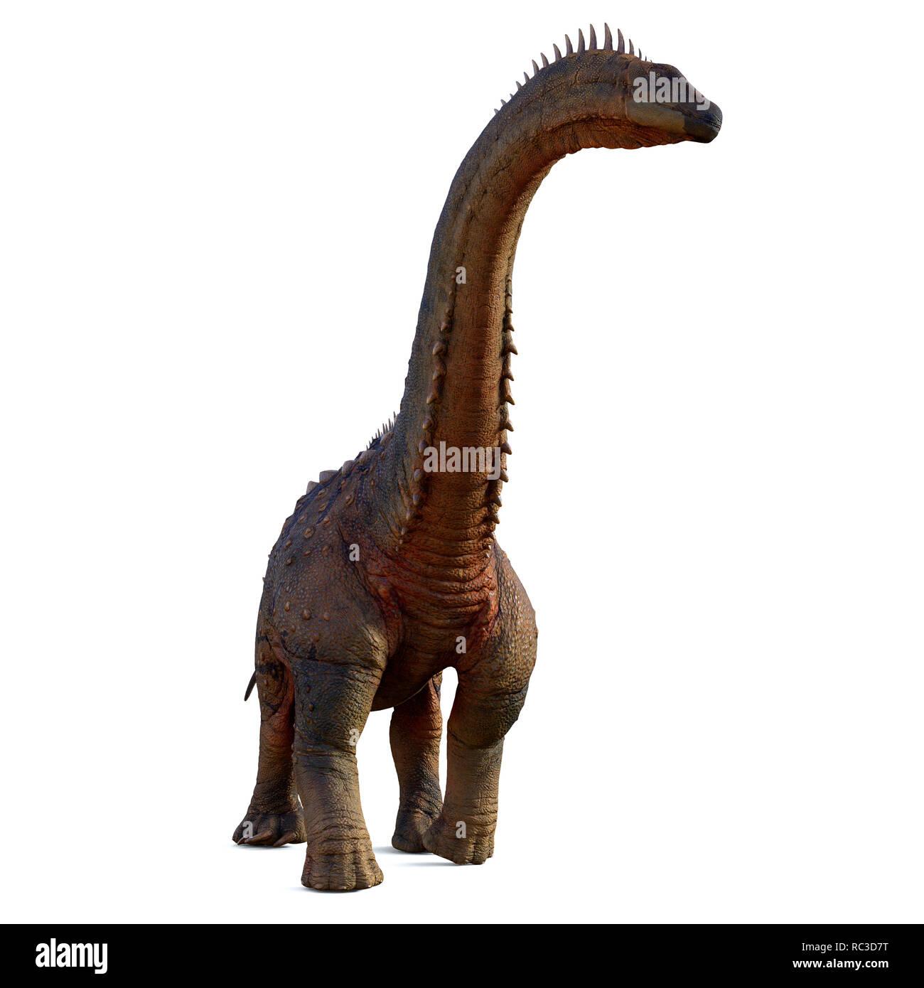 Alamosaurus Dinosaur - Alamosaurus was a titanosaur sauropod herbivorous dinosaur that lived in North America during the Cretaceous Period. - Stock Image