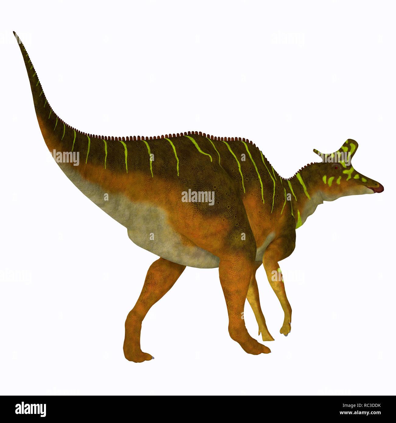 Lambeosaurus Dinosaur - Lambeosaurus was a herbivorous Hadrosaur dinosaur that lived in North America during the Cretaceous Period. - Stock Image