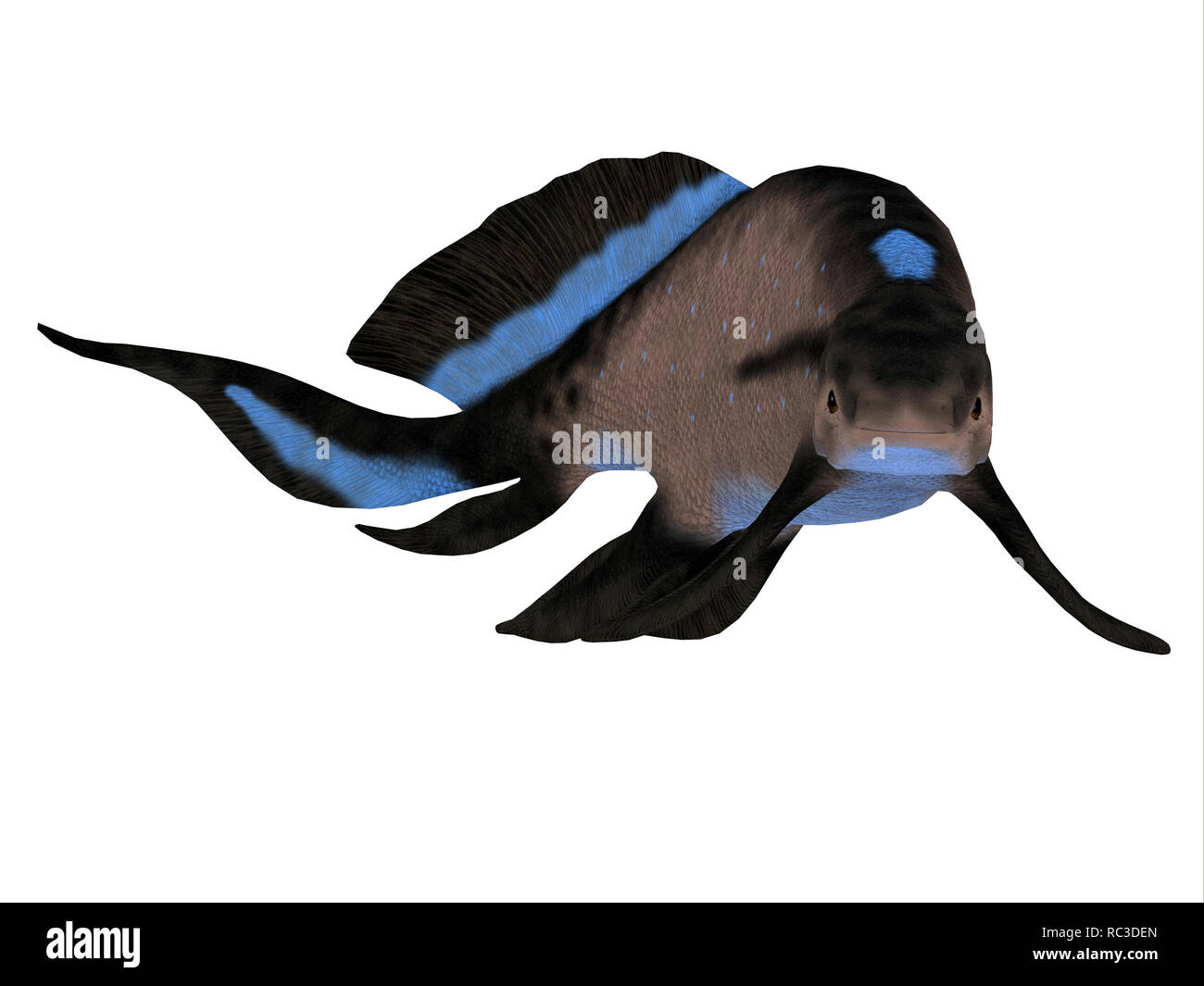 Scaumenacia Fish - Scaumenacia was a primitive jawless fish that lived in the oceans of the Devonian Period. - Stock Image
