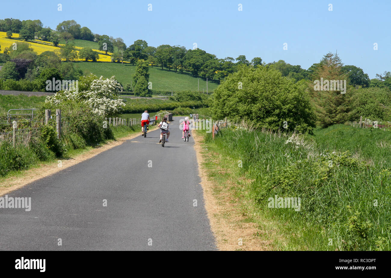 Family group cycling on the former towpath of the Newry Canal at Jerrettspass on a sunny spring day. - Stock Image