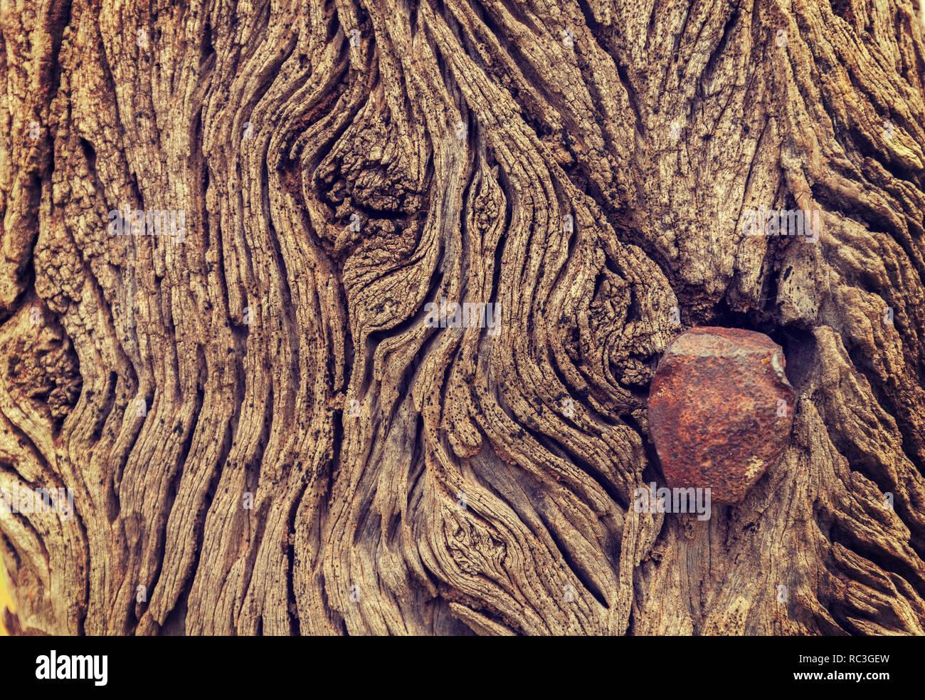 Wooden Sleeper Stock Photos & Wooden Sleeper Stock Images - Alamy