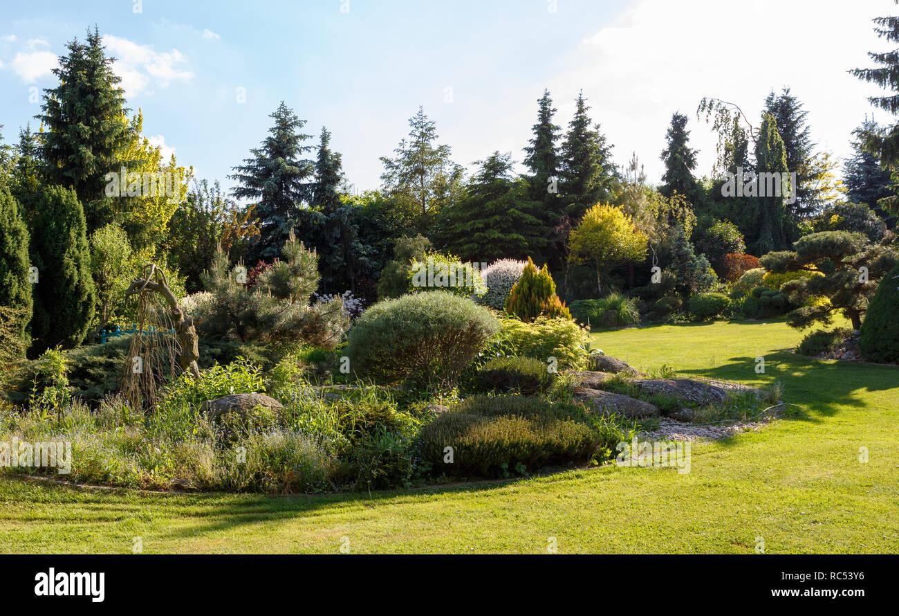 evergreen gardening